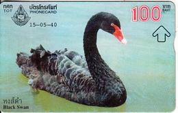 THAILAND(L&G) - Black Swan, TOT Telecard 100 Baht, CN : 704E, Used - Thailand