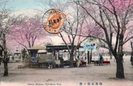 Japon - Yokohama Park - Cherry Blossom - Envoyée à Un Gendarme Français à Tien-tsin Chine - Yokohama