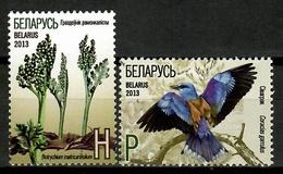 Belarus 2013 Bielorrusia / Birds Plants MNH Vögel Aves Plantas Oiseaux / Cu13636  29 - Pájaros
