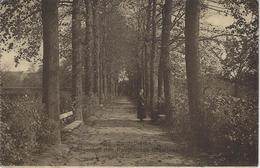 Saventhem.   -   Pensionnat Des Religieuses Ursiles  -   1919   Naar   Zele - Zaventem