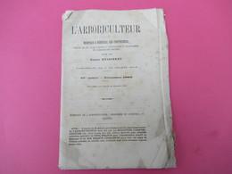 Fascicule/Botanique/L'ARBORICULTEUR/rapport à L'Horticulture, Et Principalement Fruitiére/BUISSERET/GAND/1883    MDP98 - Libri, Riviste, Fumetti
