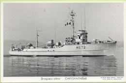 DRAGUEUR CÔTIER   CHRYSANTHEME   / Photo Marius Bar, Toulon / Marine - Bateaux - Guerre - Militaire - Guerra