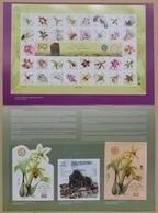 Presentatiepakket Indonesië Bandung 2017 Houten Orchidee Blad Souvenir, Gorilla Blad Souvenir # 4 ALLEEN 500 Stks - Indonesien