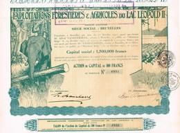 Titre Ancien - Exploitations Forestières & Agricoles Du Lac Léopold II - Société Anonyme Titre De 1927 -  Déco - Afrique