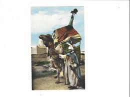 COLLECTION ARTISTIQUE L AFRIQUE TYPES DU SUD  UN BASSOUR    *****         A  SAISIR ****** - Scenes