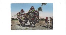 COLLECTION ARTISTIQUE L AFRIQUE   BASSOURS OU HAREM MOBILES DANS LE SUD       *****         A  SAISIR ****** - Scenes