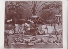 SINGAPURE FRUITS CHINE CHINA JACK FRUIT POPIA NAMUAM JAMBU ALGER LEMON   25*20CM Fonds Victor FORBIN 1864-1947 - Fotos