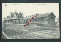 CINEY.  Intérieur De La Gare. TRAIN. Chemin De Fer. Réseau Bruxelles-Luxembourg.   2 Scans - Ciney