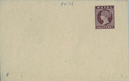 NATAL ,  FAJA POSTAL PARA PRENSA NO CIRCULADA , HALF PENNY - África Del Sur (...-1961)