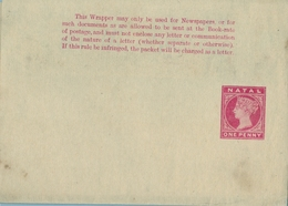 NATAL ,  FAJA POSTAL PARA PRENSA NO CIRCULADA , ONE PENNY - África Del Sur (...-1961)