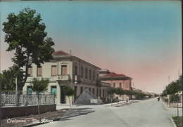 Contarina Via Roma Porto Viro Rovigo - Rovigo