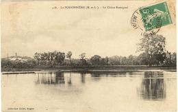 49 -    LA POSSONNIERE -  Le Chêne Rossignol   20 - France
