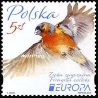 2019 - POLONIA / POLAND - EUROPA  CEPT - UCCELLI / BIRDS - SET COMPLETO. MNH. - 2019
