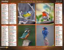 °° Calendrier Almanach La Poste 2009 Oberthur - Dépt 86 - Oiseaux - Kalenders