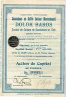 Titre Ancien - Caoutchouc En Koffie Cultuur Maatschappij - Dolok Baros - Société De Culture De Caoutcouc Et Café - 1910 - Landbouw