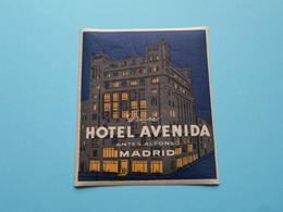 Gran Hotel AVENIDA Antes Alfonso MADRID (format +/- 8 X 9,5 Cm.) > ( Imp......) > Detail Zie/voir Photo ! - Etiquettes D'hotels