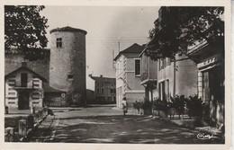 03 - GANNAT - Le Vieux Château Et Le Jardin De Gannat - Autres Communes