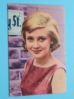 GITTE > TRIUMPH SPORT 1966 ( Voir Photo / Format +/- 6 X 9 Cm. ) ! - Non Classés
