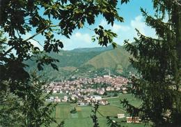 CLUSONE-PANORAMA-VIAGGIATA  F.G - Bergamo