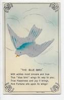 """""""the Blue Bird"""" - Bird Is Felt - Postcards"""