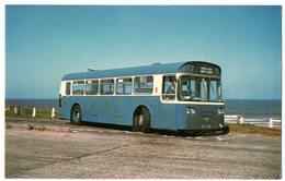 GREAT YARMOUTH CORPORATION 4 1968 BUILT SINGLE DECK ATLANTEAN PDR1/1 BUSES 142  - NVG FP - C986 - Cartoline