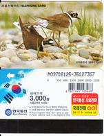 SOUTH KOREA - Birds, Little Ringed Plover(reverse Letter J At Left, W3000), 08/97, Used - Korea, South