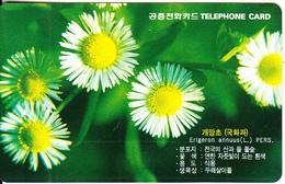 SOUTH KOREA - Flowers(reverse Letter J, W2000), 01/99, Used - Korea, South