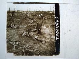 Guerre 1914-18 - CADAVRES - Chemin Des Dames - Plaque De Verre StéréoscopiqueTBE - Diapositiva Su Vetro