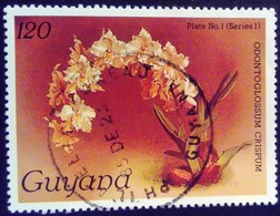 Guyana 1985 Fleur Flower Orchidée Orchid Yvert 1240 O Used - Guyane (1966-...)