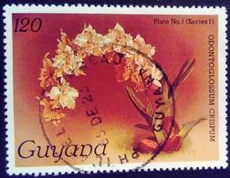 Guyana 1985 Fleur Flower Orchidée Orchid Yvert 1240 O Used - Guyana (1966-...)