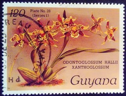 Guyana 1985 Fleur Flower Orchidée Orchid Yvert 1238 O Used - Guyane (1966-...)