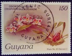 Guyana 1985 Fleur Flower Orchidée Orchid Yvert 1243 O Used - Guyana (1966-...)