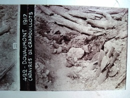 Guerre 1914-18 - DOUAUMONT - Cadavres De Crapouillots - Plaque De Verre StéréoscopiqueTBE - Diapositiva Su Vetro