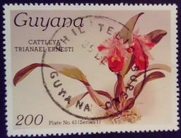 Guyana 1985 Fleur Flower Orchidée Orchid Yvert 1245 O Used - Guyane (1966-...)