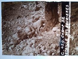 Guerre 1914-18 -  Champ De Bataille Des Caurieres - Plaque De Verre StéréoscopiqueTBE - Diapositiva Su Vetro