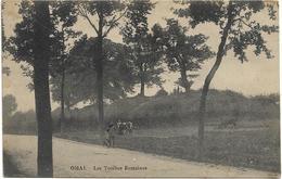 Omal   *  Les Tombes Romaines - Geer