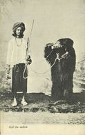 India, Native Juggler Juggling, Bear Tamer (1920s) Postcard - India