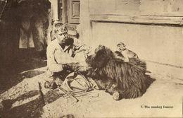 India, Native Juggler Juggling, Bear Tamer, Monkey Dancer (1920s) Postcard - India