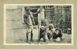 India, CALCUTTA, Baloo Wallah, Native Juggler Juggling, Bear Tamer (1910s) - India