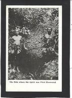 CPA Nouvelle Guinée Papouasie Type Ethnic  Non Circulé - Papua New Guinea