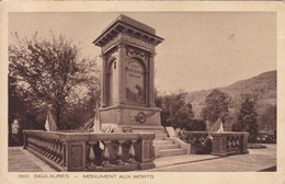 23 / SAULXURES / MONUMENT AUX MORTS - Other Municipalities