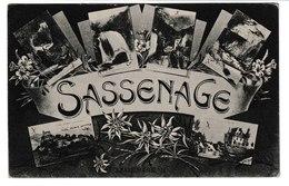 FRANCE / CPA / SOUVENIR DE SASSENAGE - Greetings From...