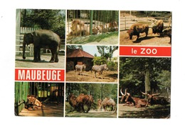 Maubeuge Le Zoo - Maubeuge