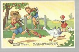** .  BOYS-SCOUTS        **---Zo  Dom  Is  Deze  Gans Nu Niet  .......    . . . . . . . . . . - Scoutisme