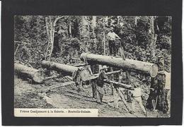 CPA Nouvelles Guinée Papouasie Type Ethnic Scieurs De Long Travail Du Bois Non Circulé - Papua New Guinea
