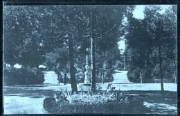 ARIANO IRPINO - AVELLINO - 1922 - VILLA COMUNALE - Avellino