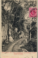 1910 , NATAL , WEENEN - PARIS , TRÁNSITOS ESTCOURT , LADYSMITH , LLEGADA , TRAMWAY AT THE MARBLE QUARRIES PORT SHEPSTONE - África Del Sur (...-1961)