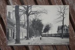 CPA - Turnhout 22 - Antwerpsche Steenweg - Chaussée D'Anvers - Tram - Tramway - Turnhout