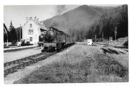 LE LIORAN (15) Photographie Format Cpa Train Locomotive En Gare Vers 1950/55 - France