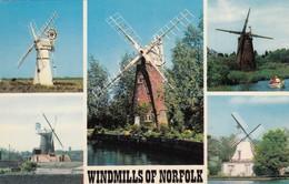 Postcard Windmills Of Norfolk My Ref  B13409 - Windmills
